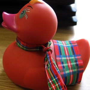 red-duck
